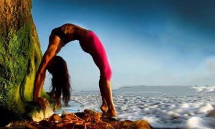 瑜伽   体位法和呼吸法,激发身体自我疗愈潜能