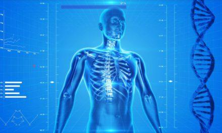 人体器官退化年龄表以及如何防御